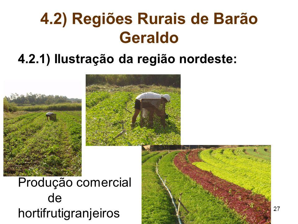 27 4.2) Regiões Rurais de Barão Geraldo 4.2.1) Ilustração da região nordeste: Produção comercial de hortifrutigranjeiros