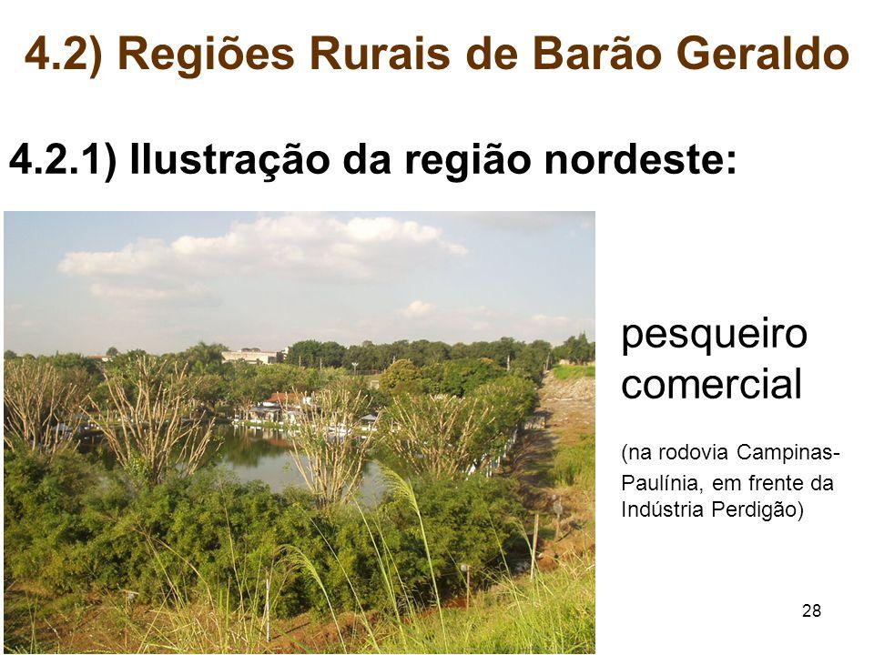 28 4.2) Regiões Rurais de Barão Geraldo 4.2.1) Ilustração da região nordeste: pesqueiro comercial (na rodovia Campinas- Paulínia, em frente da Indústr