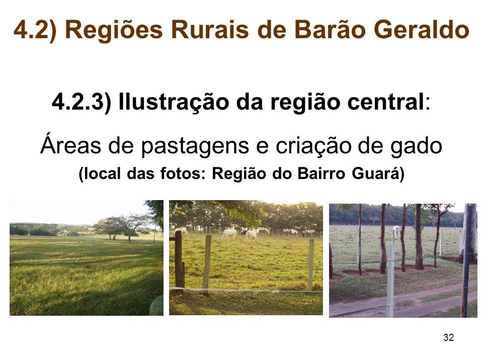 32 4.2) Regiões Rurais de Barão Geraldo 4.2.3) Ilustração da região central: Áreas de pastagens e criação de gado (local das fotos: Região do Bairro G