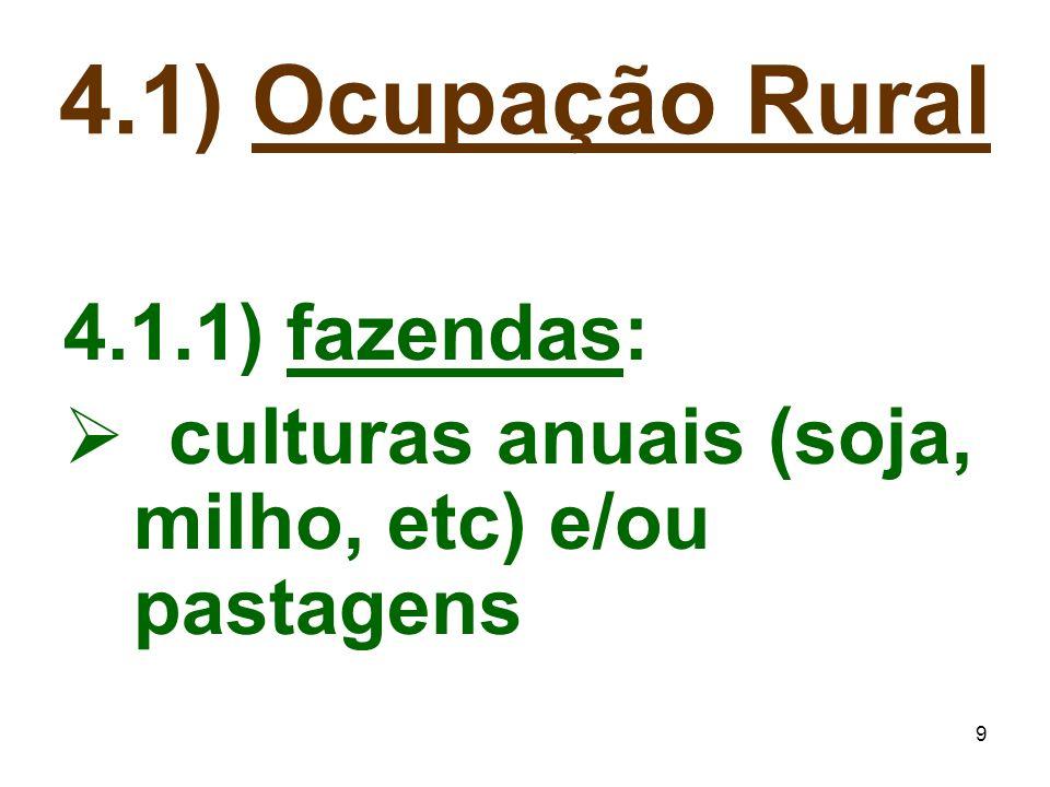 9 4.1.1) fazendas:  culturas anuais (soja, milho, etc) e/ou pastagens 4.1) Ocupação Rural