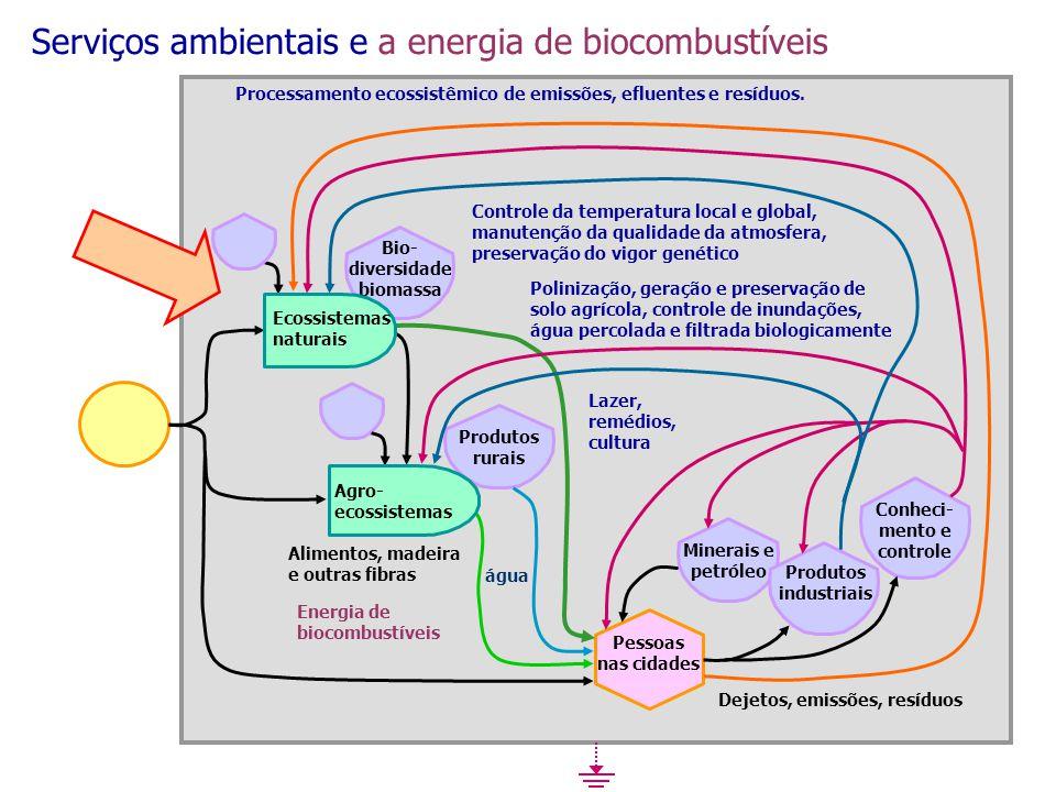 Processamento ecossistêmico de emissões, efluentes e resíduos. Controle da temperatura local e global, manutenção da qualidade da atmosfera, preservaç