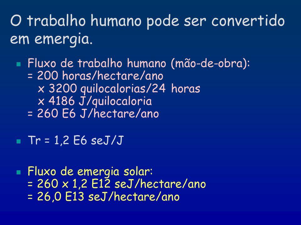 O trabalho humano pode ser convertido em emergia. Fluxo de trabalho humano (mão-de-obra): = 200 horas/hectare/ano x 3200 quilocalorias/24 horas x 4186
