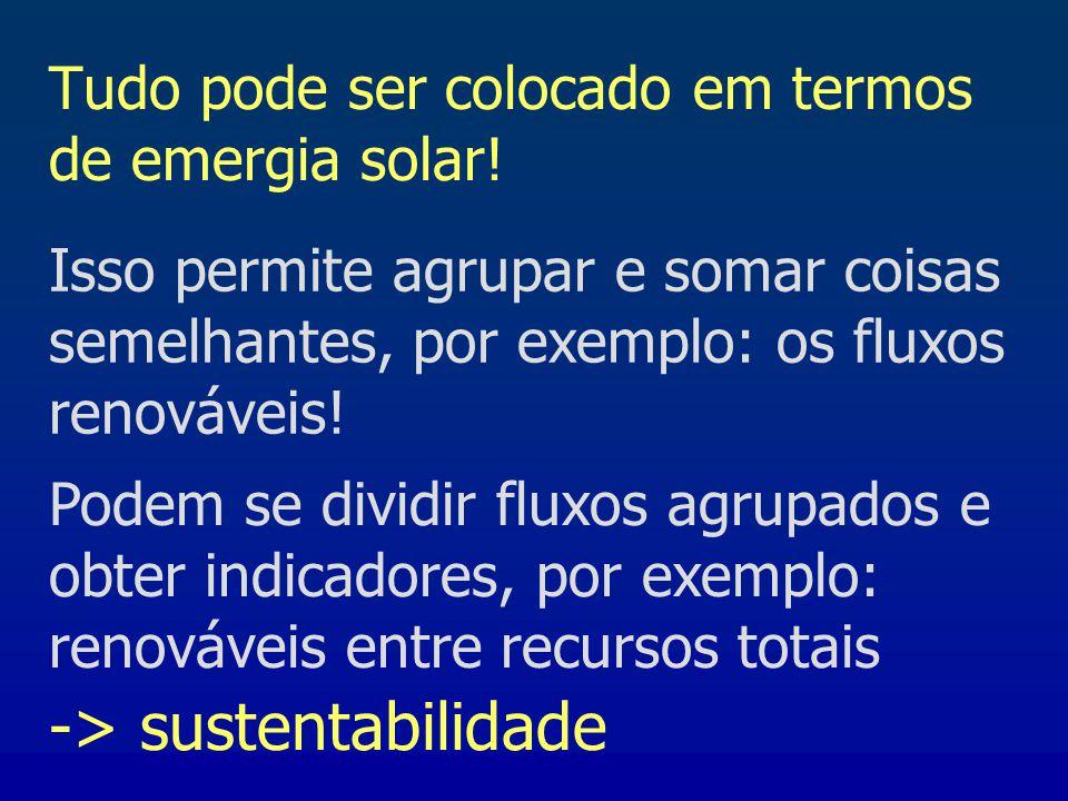 Tudo pode ser colocado em termos de emergia solar! Isso permite agrupar e somar coisas semelhantes, por exemplo: os fluxos renováveis! Podem se dividi