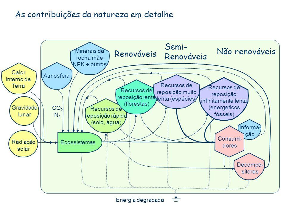 As contribuições da natureza em detalhe Ecossistemas Atmosfera Recursos de reposição rápida (solo, água) Minerais da rocha mãe NPK + outros Energia de