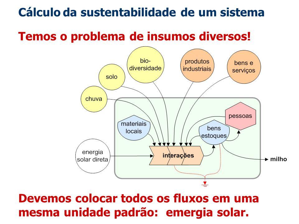 Cálculo da sustentabilidade de um sistema Temos o problema de insumos diversos! Devemos colocar todos os fluxos em uma mesma unidade padrão: emergia s