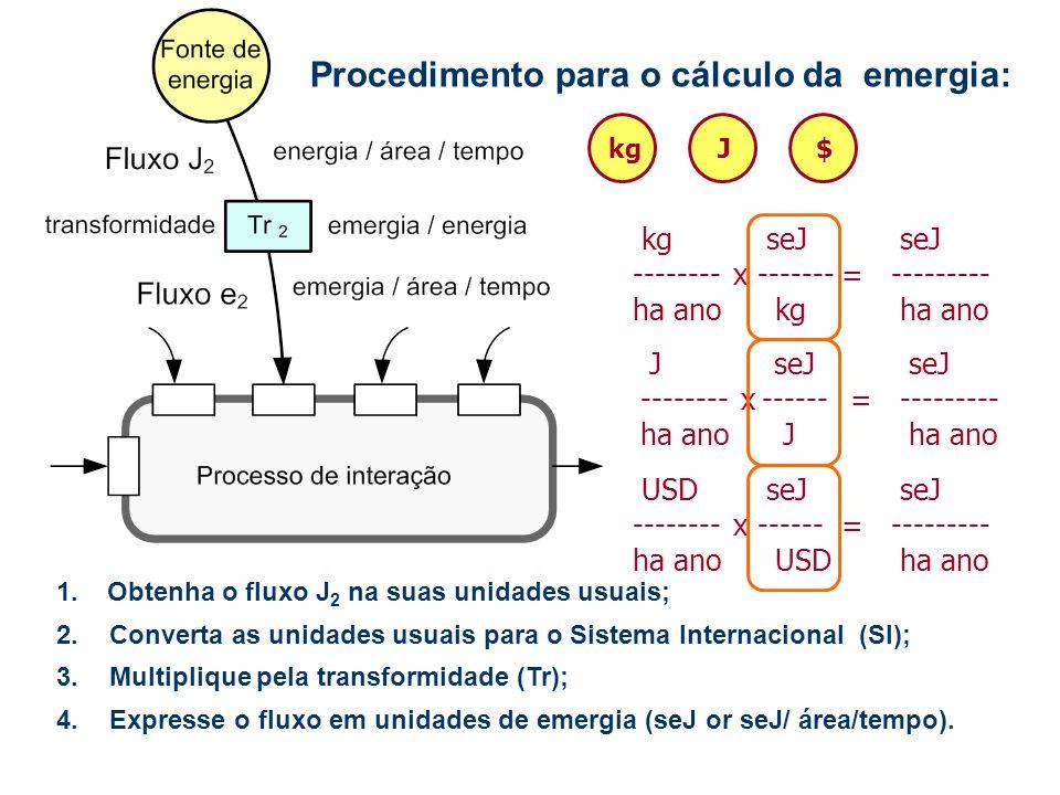 Procedimento para o cálculo da emergia: 4.Expresse o fluxo em unidades de emergia (seJ or seJ/ área/tempo). 1.Obtenha o fluxo J 2 na suas unidades usu