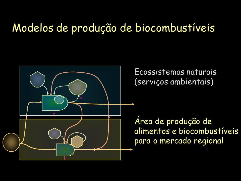 Área de produção de alimentos e biocombustíveis para o mercado regional Ecossistemas naturais (serviços ambientais) Modelos de produção de biocombustí