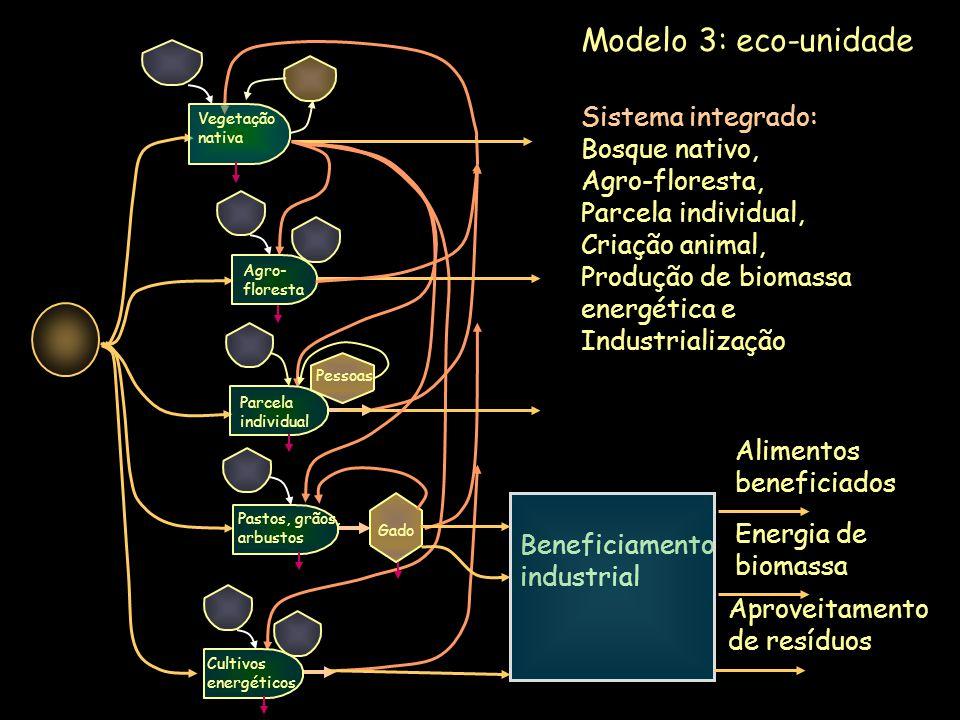 Beneficiamento industrial Sistema integrado: Bosque nativo, Agro-floresta, Parcela individual, Criação animal, Produção de biomassa energética e Indus