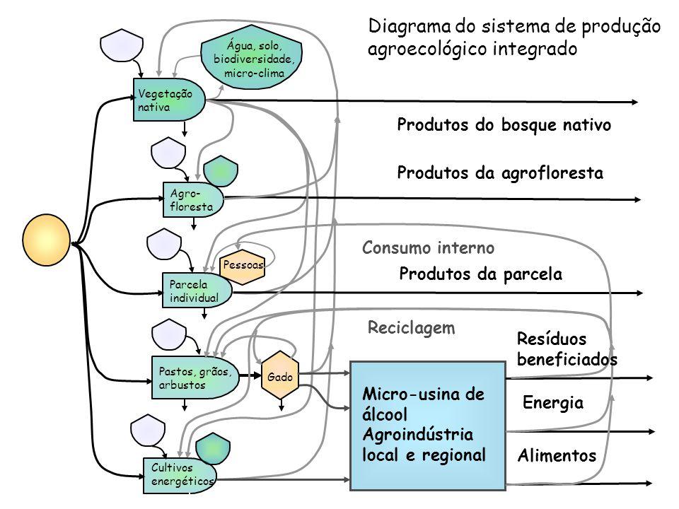 Micro-usina de álcool Agroindústria local e regional Diagrama do sistema de produção agroecológico integrado Vegetação nativa Agro- floresta Cultivos