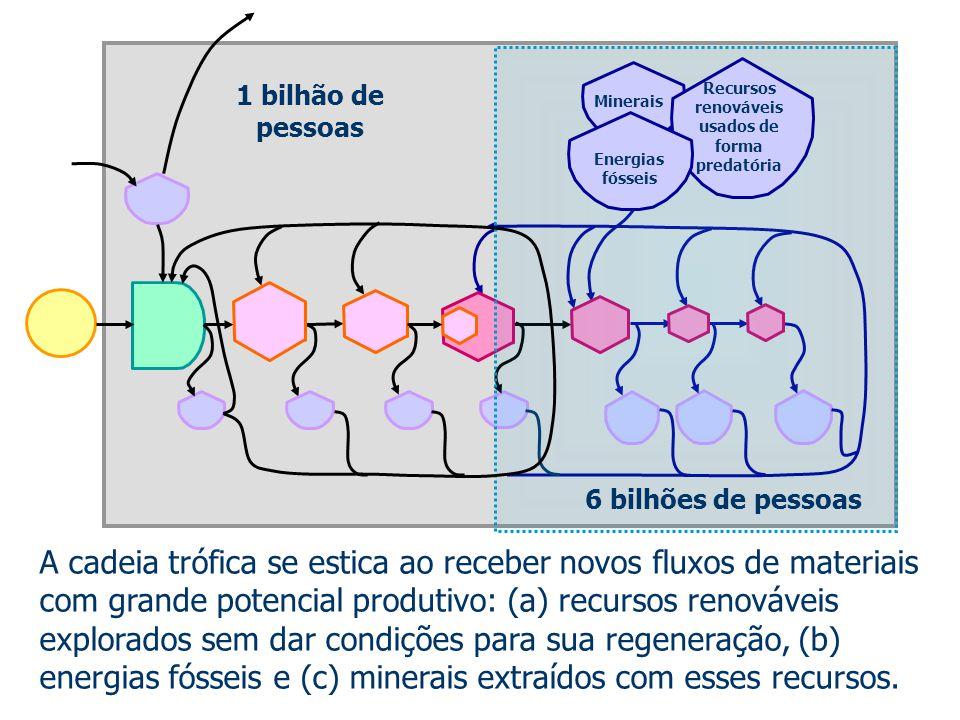 A cadeia trófica se estica ao receber novos fluxos de materiais com grande potencial produtivo: (a) recursos renováveis explorados sem dar condições p