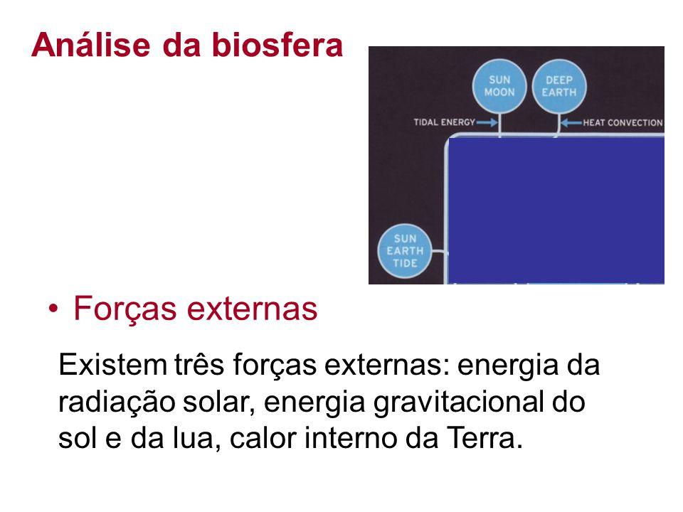 Análise da biosfera Existem três forças externas: energia da radiação solar, energia gravitacional do sol e da lua, calor interno da Terra. Forças ext