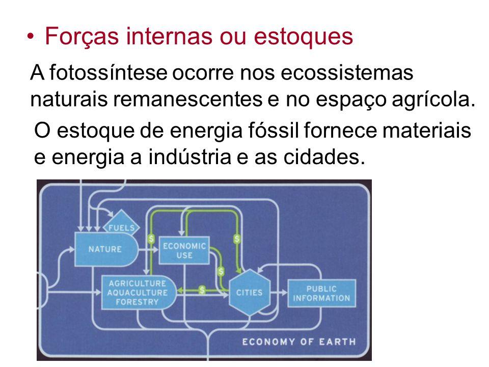 A fotossíntese ocorre nos ecossistemas naturais remanescentes e no espaço agrícola. Forças internas ou estoques O estoque de energia fóssil fornece ma