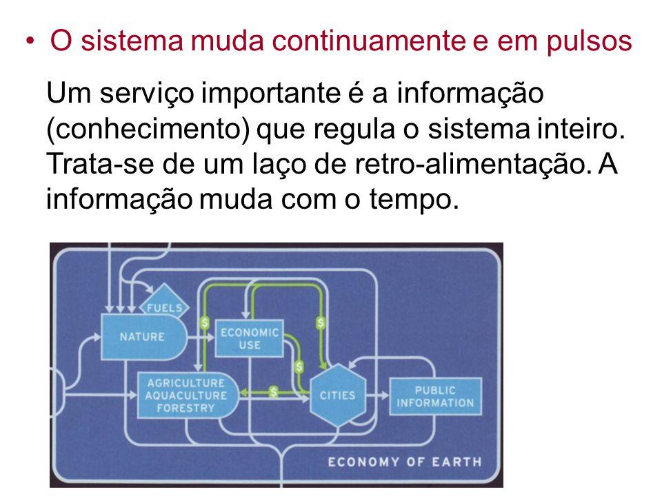 Um serviço importante é a informação (conhecimento) que regula o sistema inteiro. Trata-se de um laço de retro-alimentação. A informação muda com o te