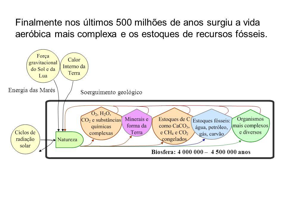 Finalmente nos últimos 500 milhões de anos surgiu a vida aeróbica mais complexa e os estoques de recursos fósseis. Biosfera: 4 000 000 – 4 500 000 ano