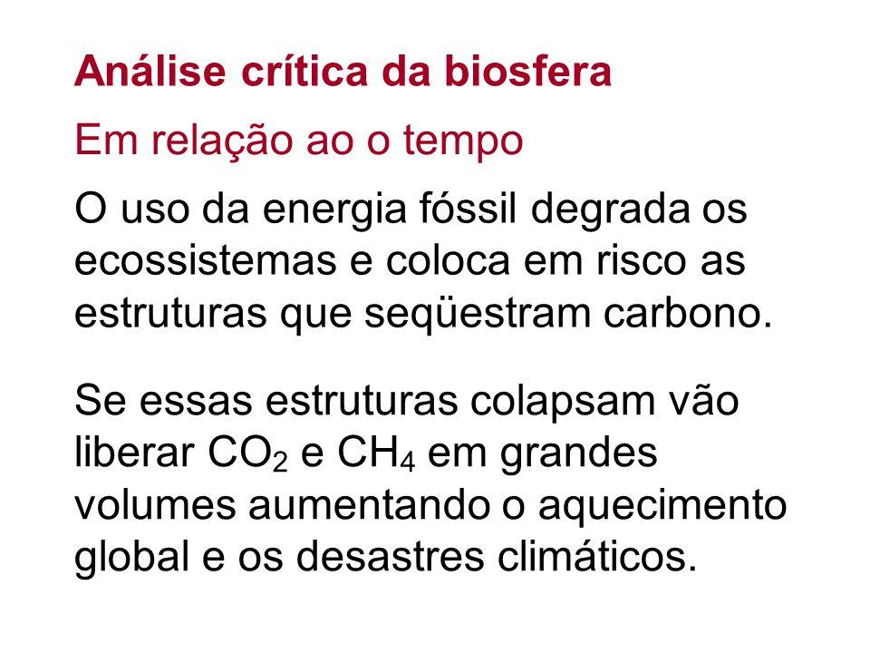 Análise crítica da biosfera O uso da energia fóssil degrada os ecossistemas e coloca em risco as estruturas que seqüestram carbono. Se essas estrutura