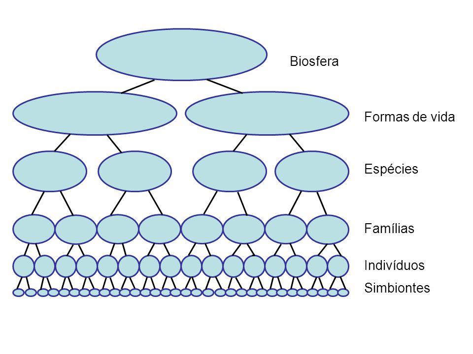 Análise crítica dos sistemas Os sistemas evoluem: eles mudam de composição, estrutura e organização com o tempo.