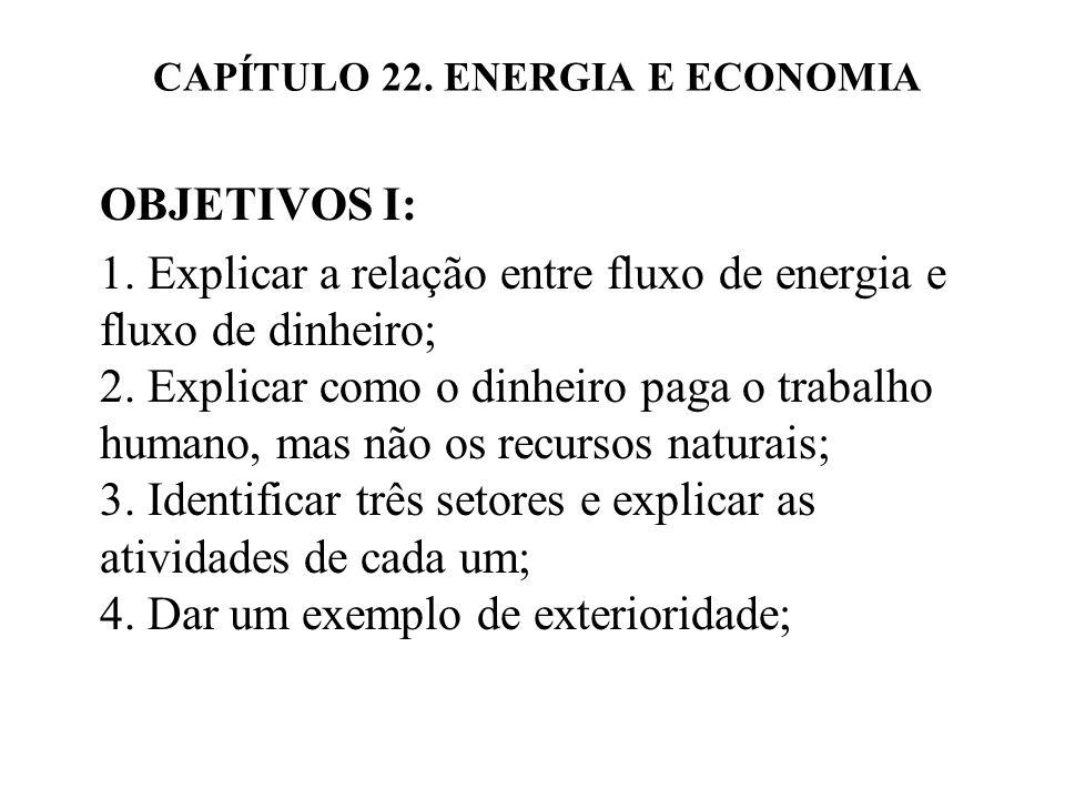CAPÍTULO 22. ENERGIA E ECONOMIA OBJETIVOS I: 1. Explicar a relação entre fluxo de energia e fluxo de dinheiro; 2. Explicar como o dinheiro paga o trab