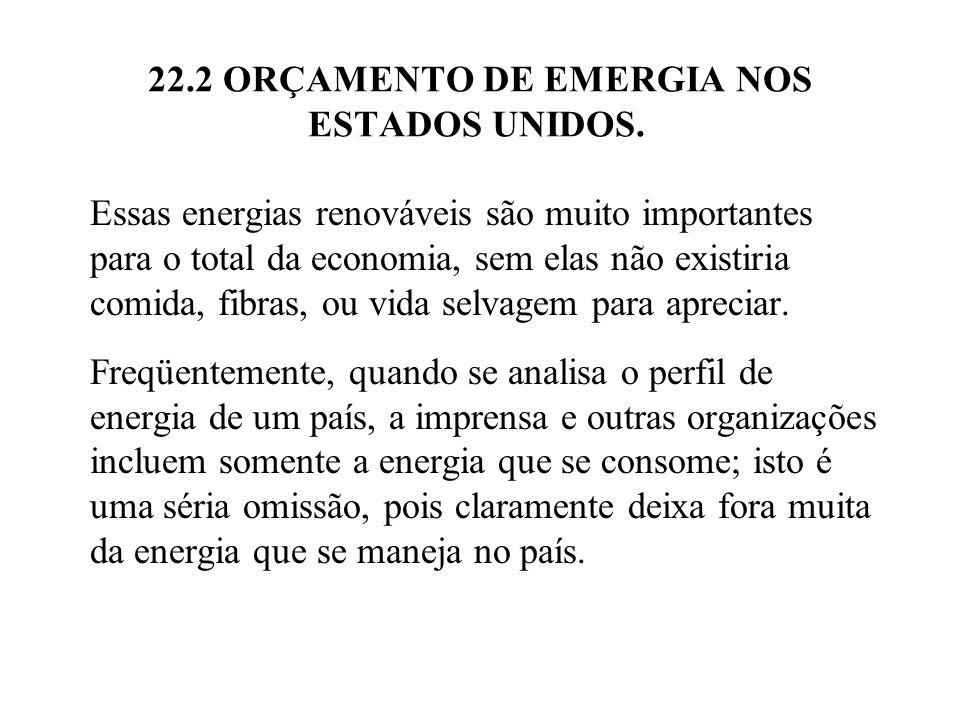 22.2 ORÇAMENTO DE EMERGIA NOS ESTADOS UNIDOS. Essas energias renováveis são muito importantes para o total da economia, sem elas não existiria comida,