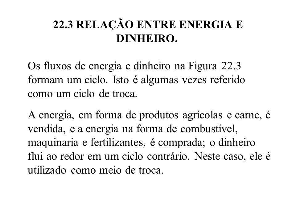 22.3 RELAÇÃO ENTRE ENERGIA E DINHEIRO. Os fluxos de energia e dinheiro na Figura 22.3 formam um ciclo. Isto é algumas vezes referido como um ciclo de