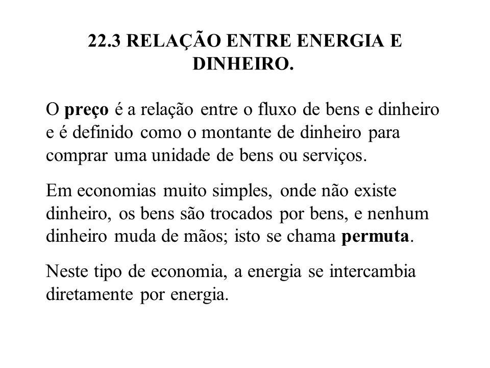 22.3 RELAÇÃO ENTRE ENERGIA E DINHEIRO. O preço é a relação entre o fluxo de bens e dinheiro e é definido como o montante de dinheiro para comprar uma