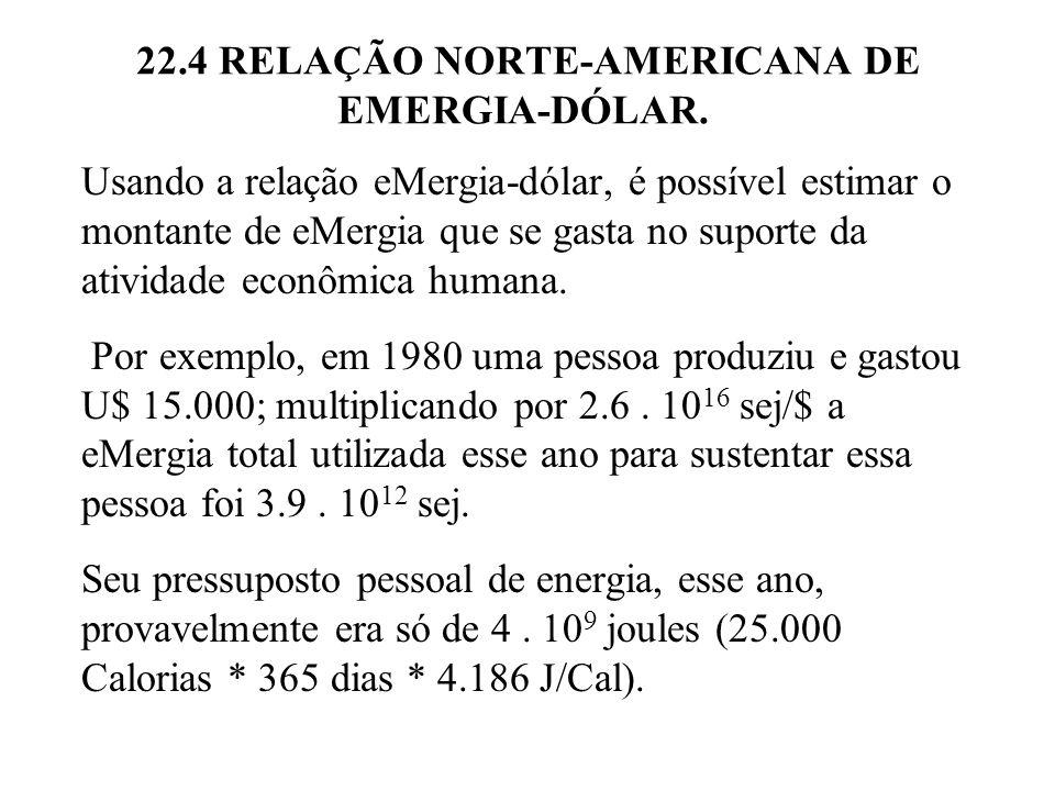 22.4 RELAÇÃO NORTE-AMERICANA DE EMERGIA-DÓLAR. Usando a relação eMergia-dólar, é possível estimar o montante de eMergia que se gasta no suporte da ati