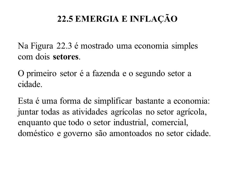 22.5 EMERGIA E INFLAÇÃO Na Figura 22.3 é mostrado uma economia simples com dois setores. O primeiro setor é a fazenda e o segundo setor a cidade. Esta