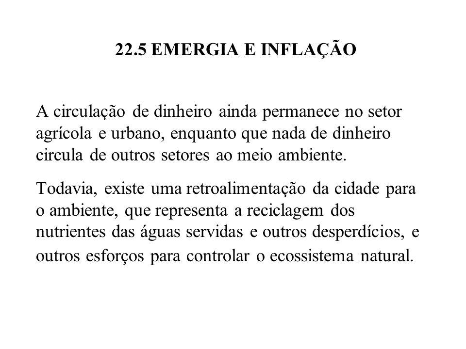 22.5 EMERGIA E INFLAÇÃO A circulação de dinheiro ainda permanece no setor agrícola e urbano, enquanto que nada de dinheiro circula de outros setores a