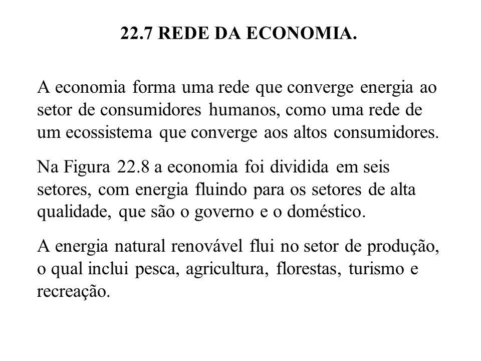 22.7 REDE DA ECONOMIA. A economia forma uma rede que converge energia ao setor de consumidores humanos, como uma rede de um ecossistema que converge a