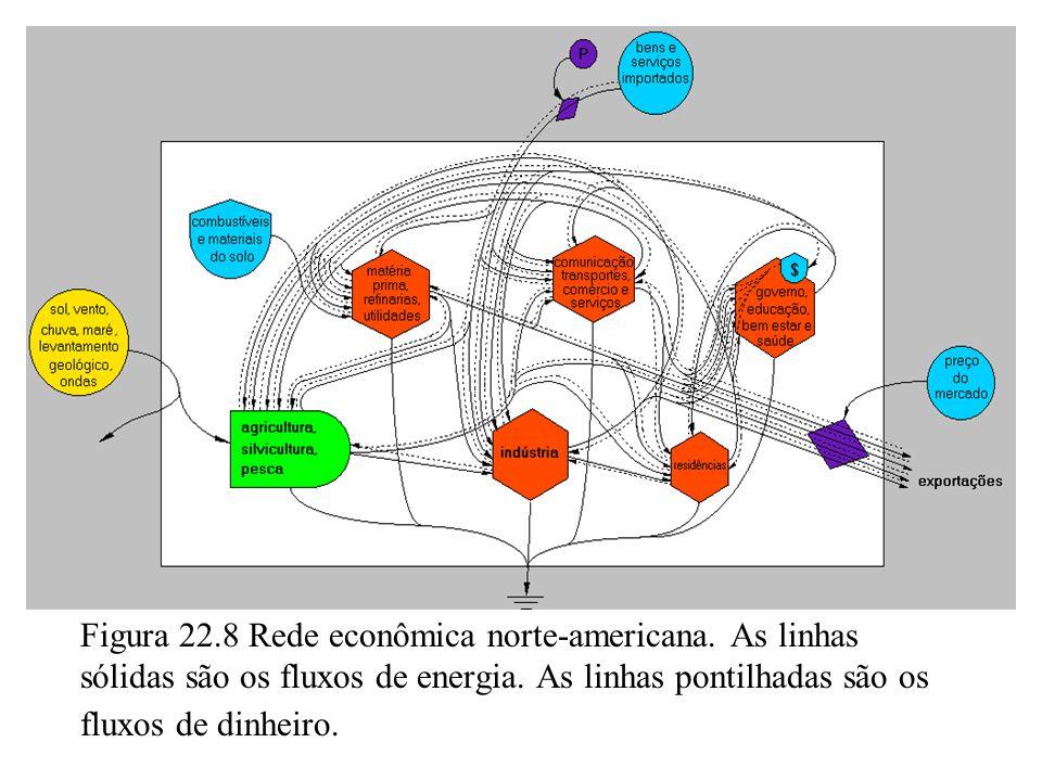 Figura 22.8 Rede econômica norte-americana. As linhas sólidas são os fluxos de energia. As linhas pontilhadas são os fluxos de dinheiro.