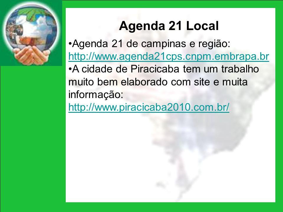 Agenda 21 Local Agenda 21 de campinas e região: http://www.agenda21cps.cnpm.embrapa.br http://www.agenda21cps.cnpm.embrapa.br A cidade de Piracicaba t
