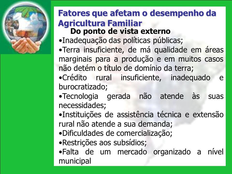 Fatores que afetam o desempenho da Agricultura Familiar Do ponto de vista externo Inadequação das políticas públicas; Terra insuficiente, de má qualid