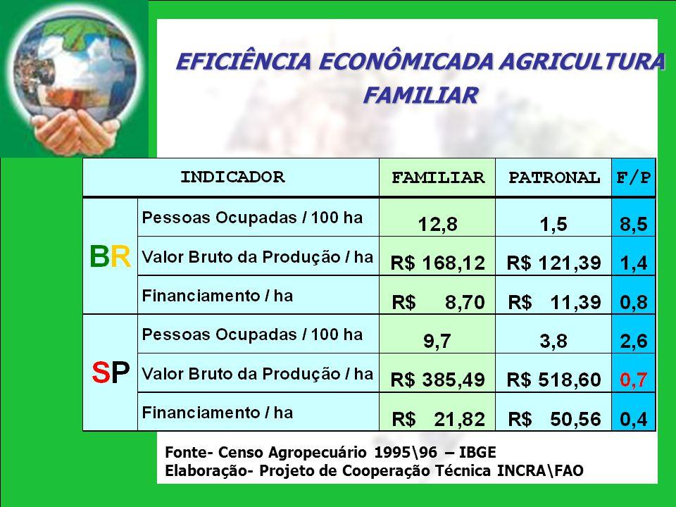 EFICIÊNCIA ECONÔMICADA AGRICULTURA FAMILIAR Fonte- Censo Agropecuário 1995\96 – IBGE Elaboração- Projeto de Cooperação Técnica INCRA\FAO