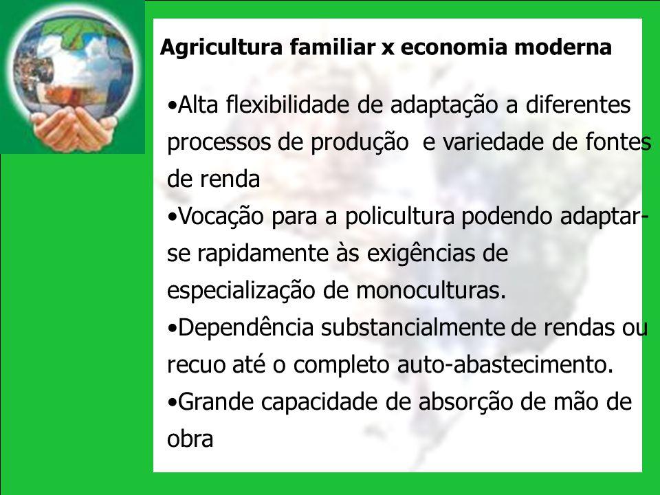 Agricultura familiar x economia moderna Alta flexibilidade de adaptação a diferentes processos de produção e variedade de fontes de renda Vocação para