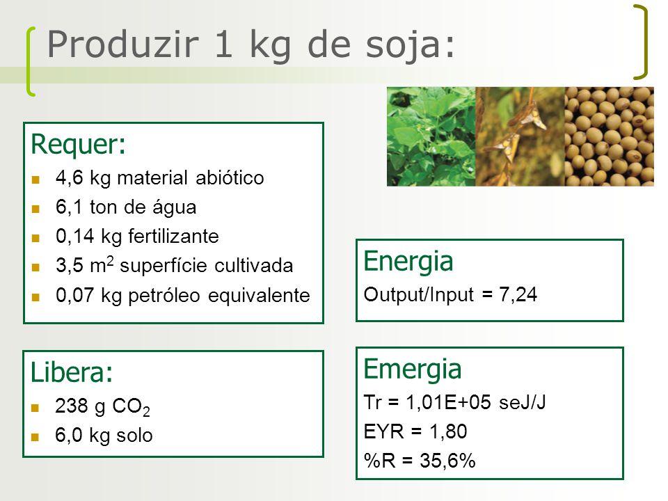 Requer: 4,6 kg material abiótico 6,1 ton de água 0,14 kg fertilizante 3,5 m 2 superfície cultivada 0,07 kg petróleo equivalente Libera: 238 g CO 2 6,0