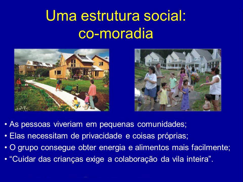 102 As pessoas viveriam em pequenas comunidades; Elas necessitam de privacidade e coisas próprias; O grupo consegue obter energia e alimentos mais fac