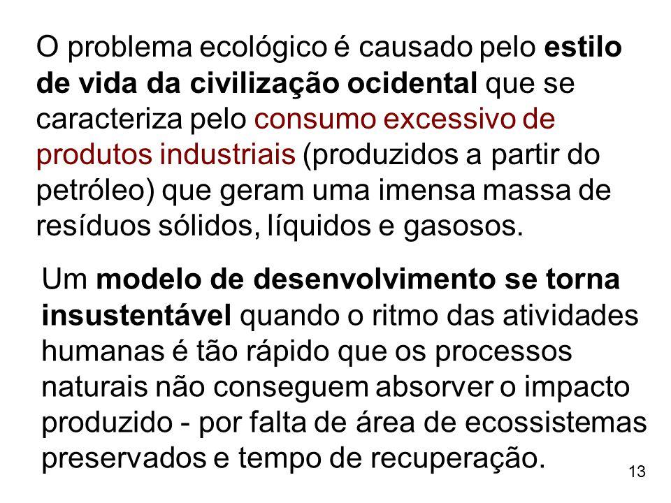 13 O problema ecológico é causado pelo estilo de vida da civilização ocidental que se caracteriza pelo consumo excessivo de produtos industriais (prod