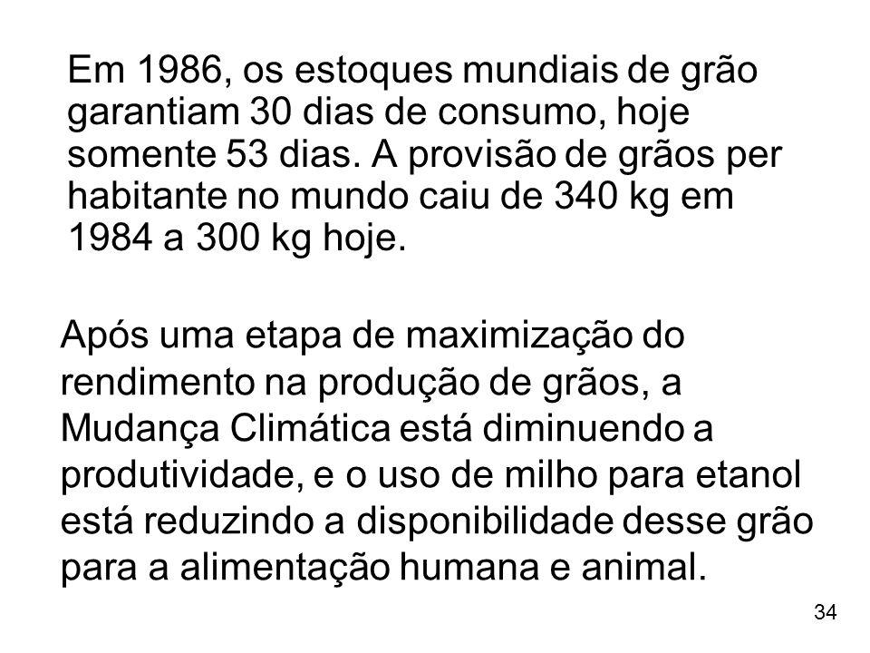 34 Em 1986, os estoques mundiais de grão garantiam 30 dias de consumo, hoje somente 53 dias. A provisão de grãos per habitante no mundo caiu de 340 kg