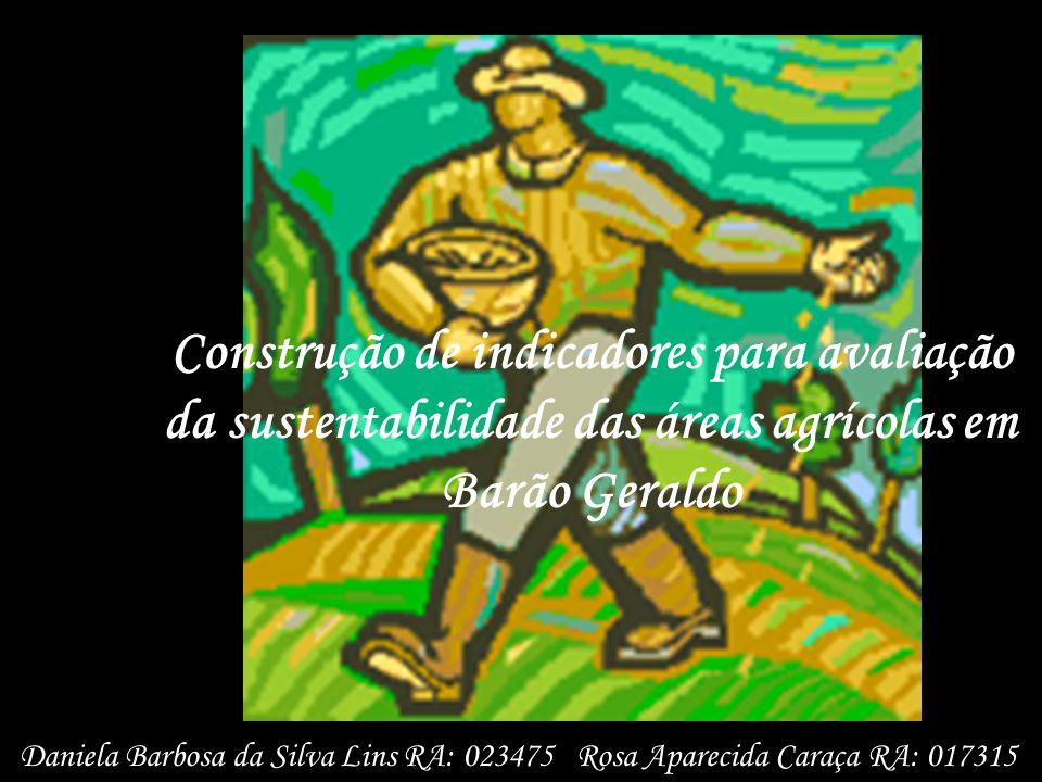 Construção de indicadores para avaliação da sustentabilidade das áreas agrícolas em Barão Geraldo Daniela Barbosa da Silva Lins RA: 023475 Rosa Aparec