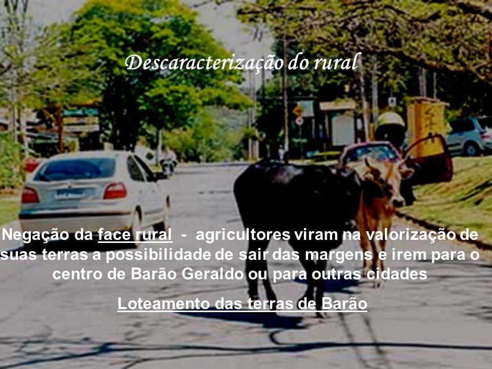 Descaracterização do rural Negação da face rural - agricultores viram na valorização de suas terras a possibilidade de sair das margens e irem para o