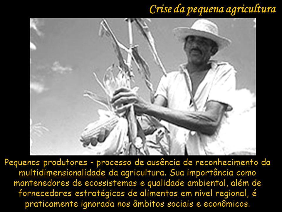 Pequenos produtores - processo de ausência de reconhecimento da multidimensionalidade da agricultura. Sua importância como mantenedores de ecossistema