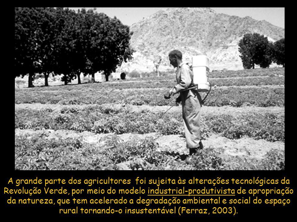 A grande parte dos agricultores foi sujeita às alterações tecnológicas da Revolução Verde, por meio do modelo industrial-produtivista de apropriação d