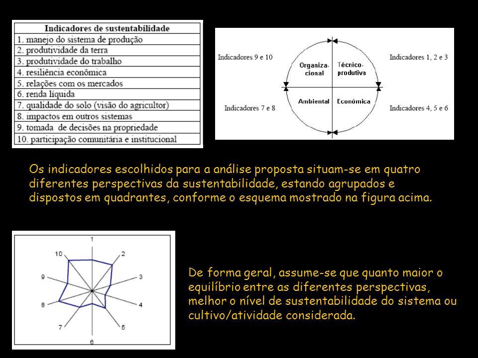 Os indicadores escolhidos para a análise proposta situam-se em quatro diferentes perspectivas da sustentabilidade, estando agrupados e dispostos em qu
