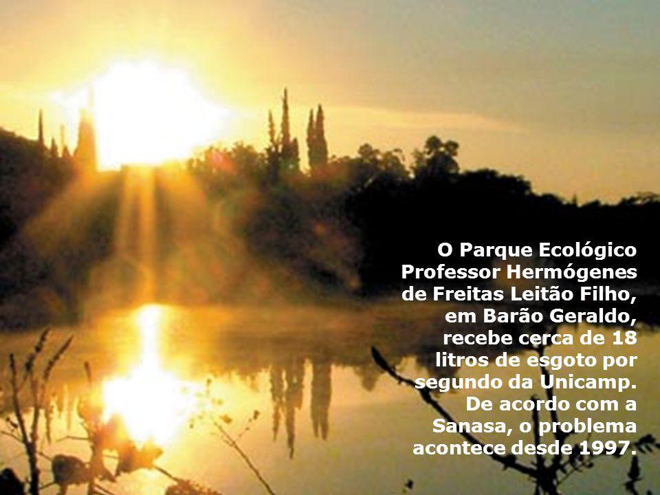 O Parque Ecológico Professor Hermógenes de Freitas Leitão Filho, em Barão Geraldo, recebe cerca de 18 litros de esgoto por segundo da Unicamp. De acor