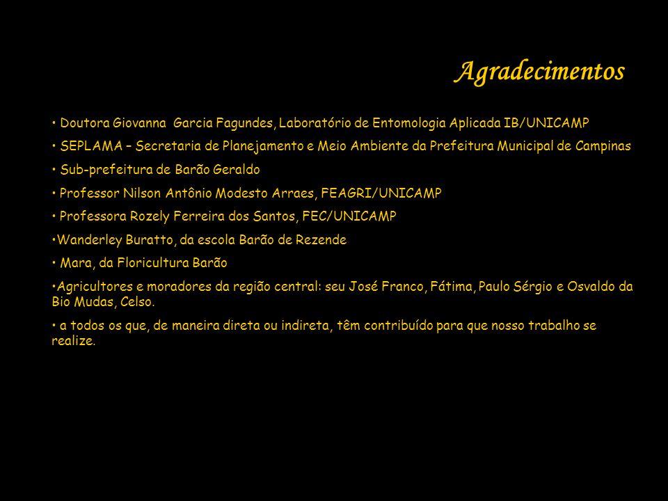 Agradecimentos Doutora Giovanna Garcia Fagundes, Laboratório de Entomologia Aplicada IB/UNICAMP SEPLAMA – Secretaria de Planejamento e Meio Ambiente d