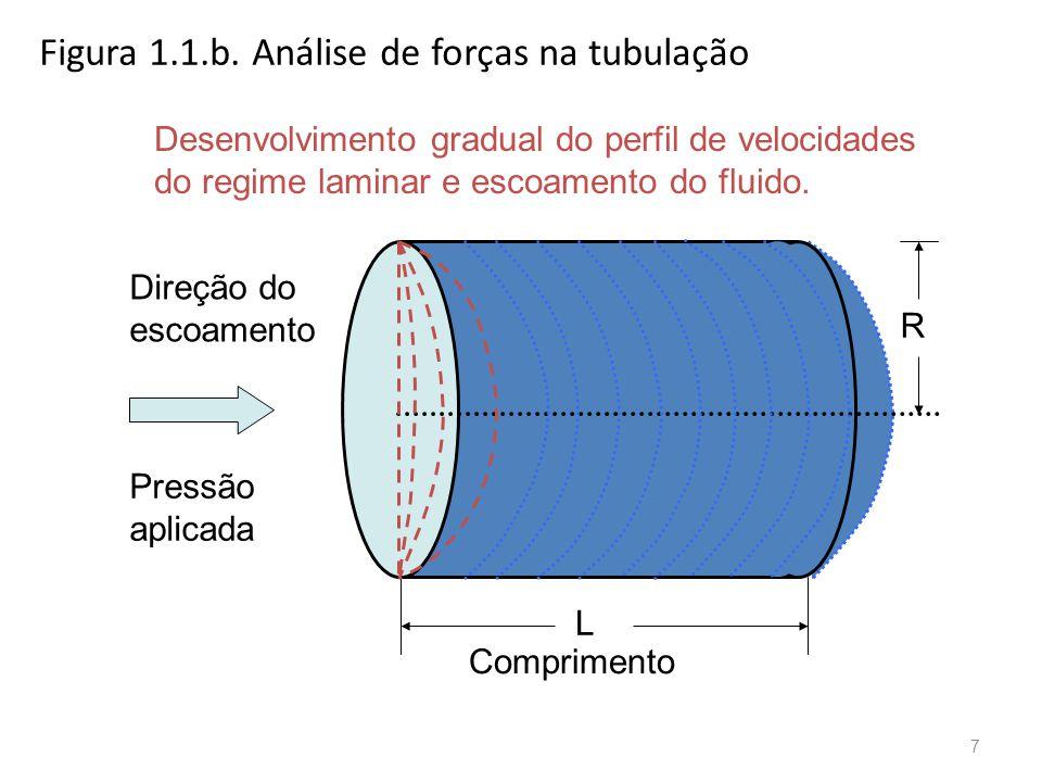 Figura 1.1.b.