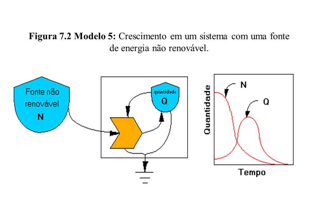 Figura 7.2 Modelo 5: Crescimento em um sistema com uma fonte de energia não renovável.