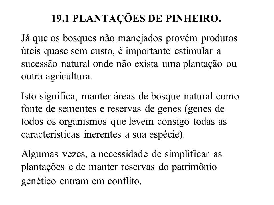 19.1 PLANTAÇÕES DE PINHEIRO. Já que os bosques não manejados provém produtos úteis quase sem custo, é importante estimular a sucessão natural onde não