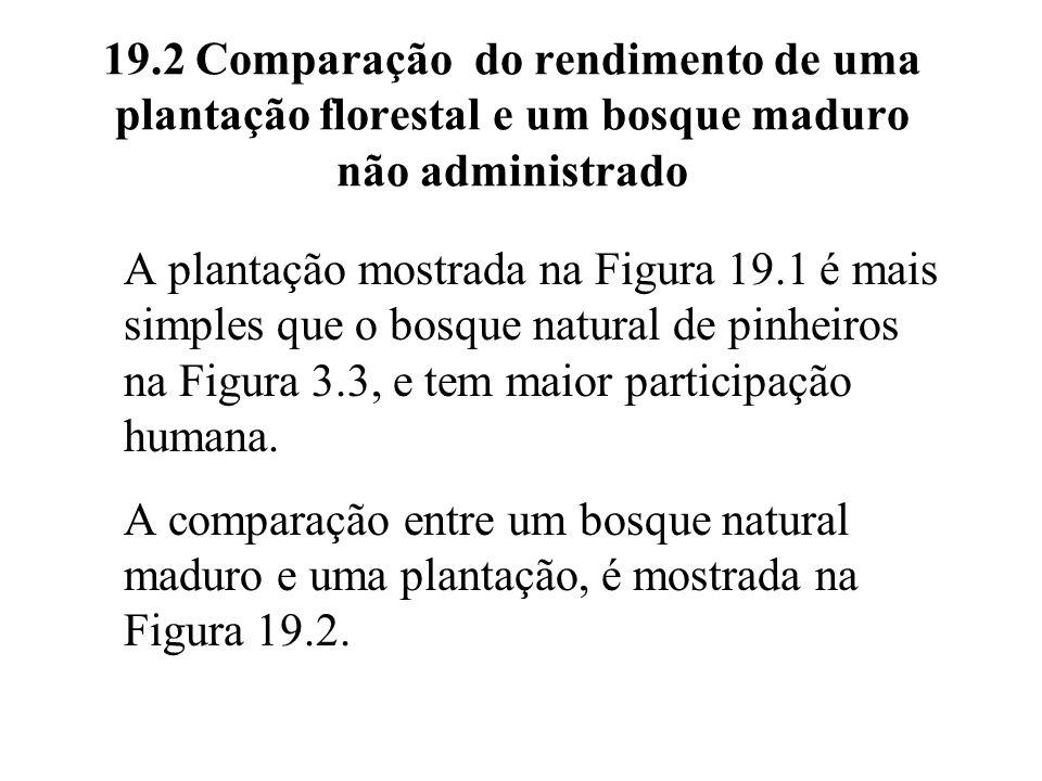 19.2 Comparação do rendimento de uma plantação florestal e um bosque maduro não administrado A plantação mostrada na Figura 19.1 é mais simples que o