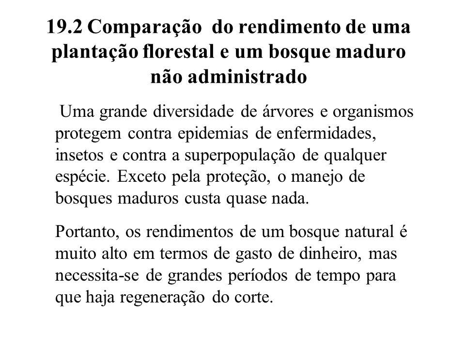 19.2 Comparação do rendimento de uma plantação florestal e um bosque maduro não administrado Uma grande diversidade de árvores e organismos protegem c