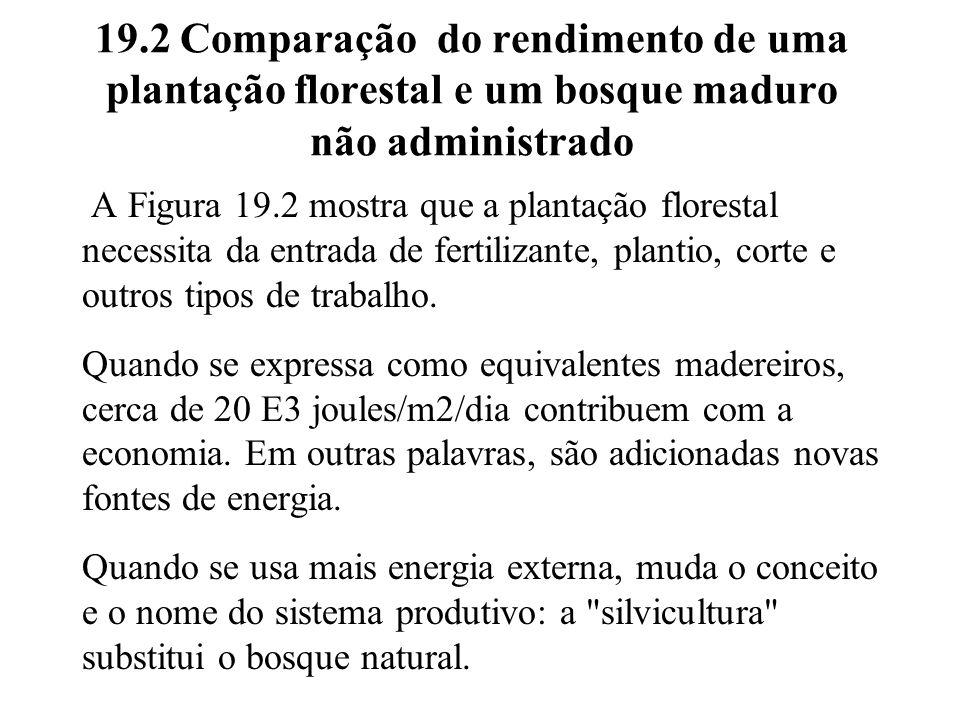 19.2 Comparação do rendimento de uma plantação florestal e um bosque maduro não administrado A Figura 19.2 mostra que a plantação florestal necessita